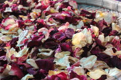 Group of small dried roses. In basket Royalty Free Stock Photography
