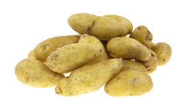 Group of small gourmet potatoes Royalty Free Stock Photos
