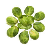 Fresh healthy brussel sprouts Royalty Free Stock Images