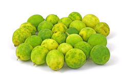 Group Small Key Lime Fruit Royalty Free Stock Images
