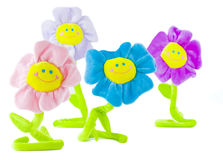 Group of smiling flowers Stock Photography