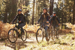 Group of smiling friends riding bikes in a forest, side view Stock Photos