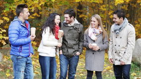 Group of smiling men and women in autumn park stock video footage