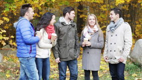 Group of smiling men and women in autumn park stock footage