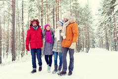 Group of smiling men and women in winter forest Stock Image