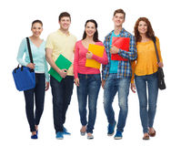 Group of smiling teenagers with folders and bags Stock Photography
