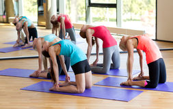 Group of smiling women stretching in gym Stock Photo