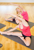 Group of smiling women stretching in the gym Stock Photos