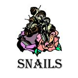 Snails on roses with the word snails. royalty free illustration