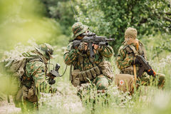 Group of soldiers special forces during the raid in the forest Stock Photos