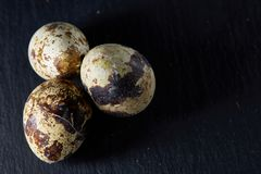 Group of some quail eggs on a dark background, top view, close-up, selective focus, copy space, backlight. Group of some spotted quail eggs on a black Stock Image