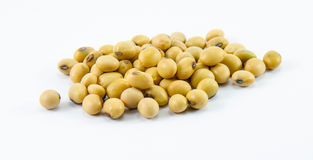 Group of soybean. On white background stock photography