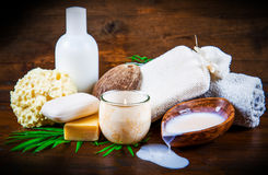 Group of spa coconut products Stock Image