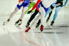 Group speed skaters Stock Photos