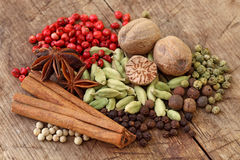 Group of spices Royalty Free Stock Photography