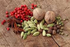Group of spices Stock Photography