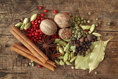 Group of spices stock image