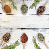 Group of spices on wood background Royalty Free Stock Photos