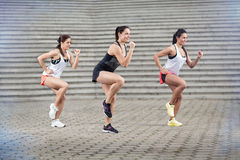 Group of sportswomen doing exercises Royalty Free Stock Photography