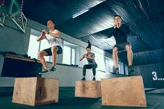 Group of sporty muscular people are working out in gym. stock photo