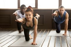 Group of sporty people in Bird dog exercise with instructor. Group of sporty young afro american and caucasian people practicing yoga lesson with smiling royalty free stock photos