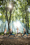 Group of sporty persons doing exercises in nature Stock Photography