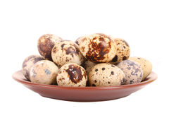 Group of spotted quail eggs in the plate. Isolated in white Stock Photo