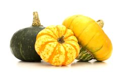 Group of squash Royalty Free Stock Image
