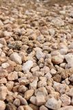Stone texture from desert place Stock Image