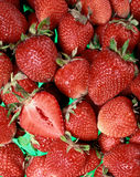 Group of strawberries Stock Photography