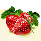 Watercolor painting on white background. Group of strawberries. watercolor painting on white background Royalty Free Stock Photo