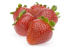 Group Strawberry. Strawberries  white background group Strawberry Stock Image