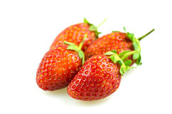 Group of strawberry fruit Royalty Free Stock Photography