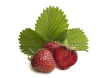 Group of strawberry on white background with leaves Royalty Free Stock Image