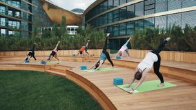 Group stretch leg in yoga exercises outside at resort patio on summer sunny day stock footage
