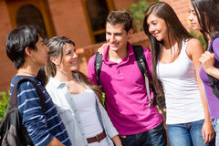 Group of students Royalty Free Stock Image