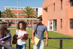 Group of students in Campus. Group of students sitting on school campus Royalty Free Stock Images