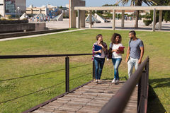 Group of students in Campus. Group of students walking on school campus Royalty Free Stock Images