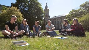 Group of students chatting on campus lawn. Happy group of college students communicating and sharing ideas with each other on campus lawn while relaxing after stock video footage