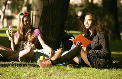 Group of students on grass, prepaing to exam Royalty Free Stock Photo
