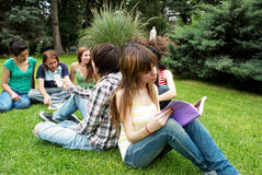 Group of students sitting in park Royalty Free Stock Image
