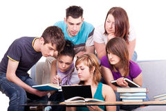 Group of  students studying Stock Photo