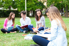 Group of students studying outdoor Stock Image