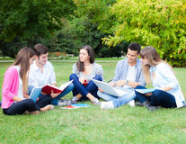 Group of students studying outdoor Royalty Free Stock Photography