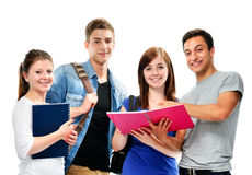 Group of the students Stock Images