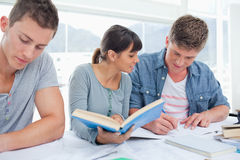 A group of students work together at their homework. A studying group of students sit together and use books to help them Royalty Free Stock Photo