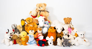 Group of stuffed animals. On white background Royalty Free Stock Images
