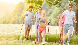 Group in summer nordic walking Stock Photography