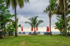 Group of sunbeds and parasols nearby seaside in the evening Royalty Free Stock Photography