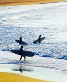 Group of surfers Stock Photography